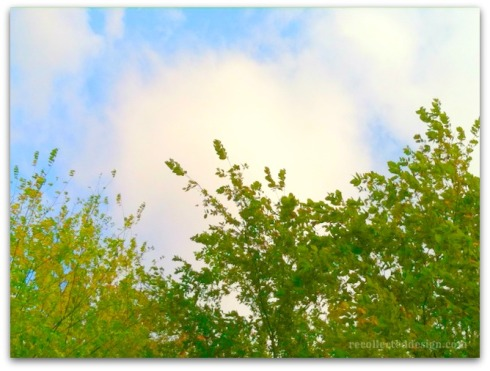 wm sky2