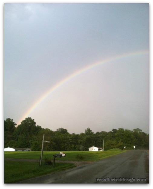 rainbow cropped