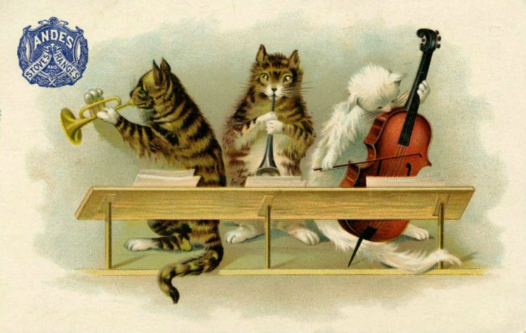 musiccatsenlarged
