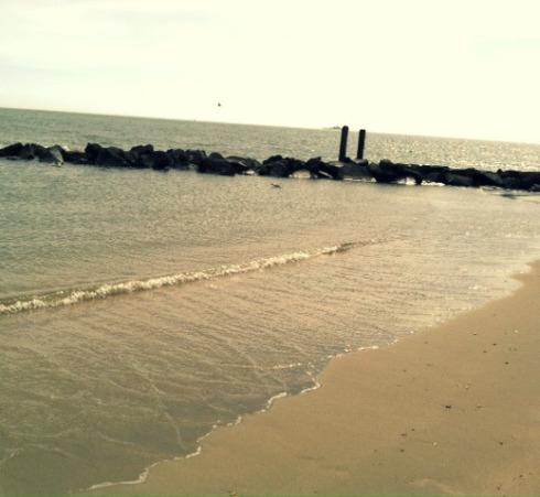 edited shore line