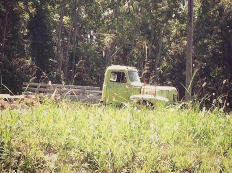green farm truck